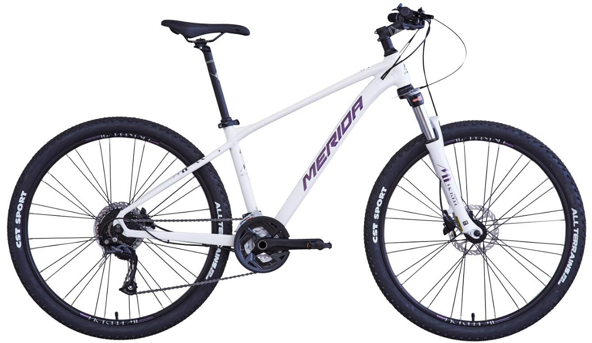 維多利亞ML700